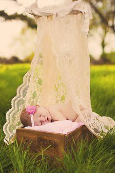 sweet lace backdrop by Tara Swain. I'd use it indoors too!