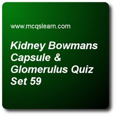 Kidney Renal Artery and Vein Quiz - MCQs Questions and Answers - Online A level Biology Quiz 59 Quiz With Answers, Quiz Questions And Answers, Question And Answer, This Or That Questions, A Level Biology, Arteries And Veins, Certificates Online, Multiple Choice, Quizzes