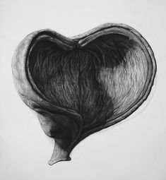 Organic Shape No.4, Charcoal on paper, 100 x 70 cm. Realistic charcoal drawing by Liu Ling from Art Is http://artis.sg - #realism #nature