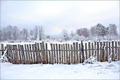 Vijf manieren om te tuinieren in de winter