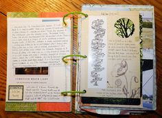 I love this!! I love to journal so much and I like combining scrapbooking and journaling !! great idea!!