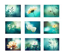 Teal Photo Set - 9 Photographs - aqua turquoise nature flowers botanical photography set nine photos yellow white colorful wall art prints