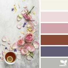 today's inspiration image for { color set } is by @c_colli ... thank you Cristina for another breathtaking #SeedsColor photo share!