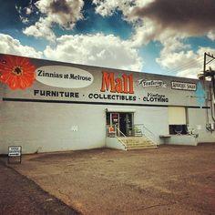 Photo of Zinnias at Melrose - Phoenix, AZ, United States. Entrance of building faces North.