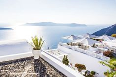 Our guides have carefully selected off-the-beaten-path restaurants, where only locals would go, in order to deliver the local flavour of your destination. Discover our Shore Excursions, Santorini Greece, The Locals, Perspective, Stock Photos, Vacation, Table Decorations, Landscape