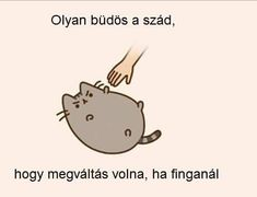 Pusheen Cat, Funny Moments, Funny Cats, Haha, Comedy, Funny Pictures, Jokes, Humor, Cute
