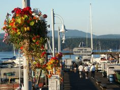 Flowers at Port of Friday Harbor Marina, San Juan Islands, WA. Want to go there too.  Went there what a lovely place!!