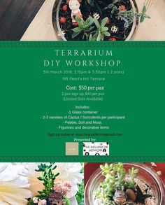 Always thought of having one of the cute terrarium for your office or home? Why not join us on 5th March 2016 for a Terrarium DIY Workshop! You get to learn how to make your own succulent terrarium!   Cost: - $50 per pax - For 2 pax sign up together, $45 per pax   Includes: - 1 glass container - 2-3 varieties of Cactus / Succulents per participant - Pebble, Soil and Moss - Figurines and decorative items   Email in your interest today to marcheauxfleur@gmail.com or whatsapp at +6598340200 and…