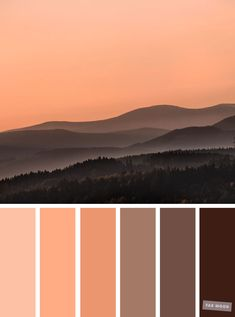Brown chocolate and peach color combination #color #colorpalette #peach
