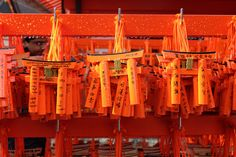 伏見稲荷大社 Fushimi Inari Shrine Kyoto