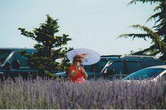 Lady with a parasol in Lavender. #lavenderfarm #organic #upick #hoodriver #oregon #familyfun