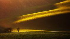 Moravian Lines by Martin Rak