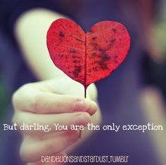 But darling you are the only exception..