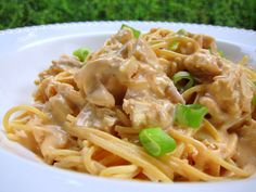 Buffalo Chicken Spaghetti Recipe - chicken and spaghetti tossed in a cream cheese, buffalo, cheddar and Ranch sauce - OMG! I wanted to lick the plate! Buffalo Chicken Pasta, Chicken Spaghetti Recipes, Chicken Recipes, Recipe Chicken, Chicken Meals, Chicken Rice, Rotisserie Chicken, Best Pasta Recipes, Dinner Recipes