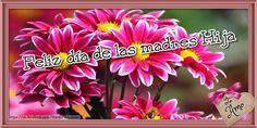 FrasesparatuMuro.com: Feliz dia de las Madres...Hija