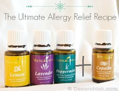 Relief For Allergy Sufferers! {Natural Allergy Remedy That Works} | Decorchick! | Bloglovin'