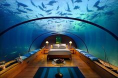 Sleep underwater Maldives — Doesn't this look cool? An underwater bedroom at the Hilton resort in the Maldives. Hotel Subaquático, Hotel Restaurant, Hotel Suites, Restaurant Offers, Ice Hotel, Hotel Stay, Hotel Decor, Glass Restaurant, Hotel Food