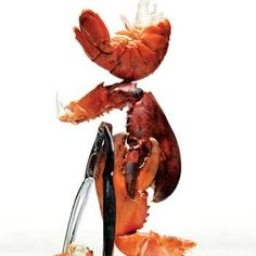 HOW TO Cook a Lobster | http://www.rachaelraymag.com/food-how-to/grocery-shopping-tips/how-to-cook-lobster#