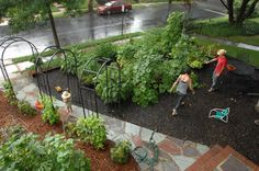 20 Wonderful Edible Garden Ideas Digital Picture Inspiration