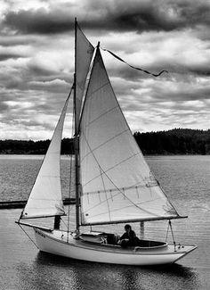 Daysailer. Beautiful #sailing image. #WeKnowYourHydraulics