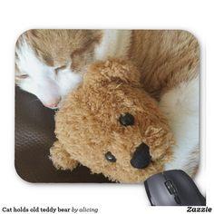 Cat holds old teddy bear