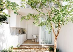 C+M Studio have upped the ante with their latest renovation project in Sydney. The Paddington Project is the design duo's second Open House listing.