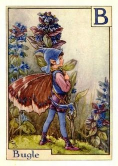 Bugle Flower Fairy from the Flower Fairy Alphabet by Cicely Mary Barker ❤❦♪♫