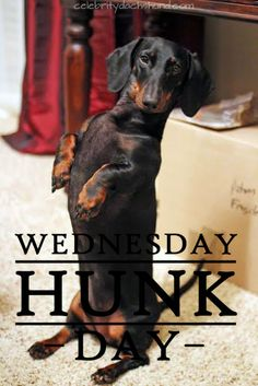 Today's Wednesday Hunk is Otto from Bossier City, Louisiana.