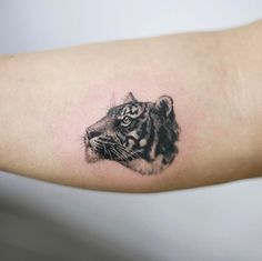 Tiny tiger cover-up by Tattooist Doy