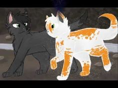 Hollyleaf and Fallen leaves- I wouldn't mind it