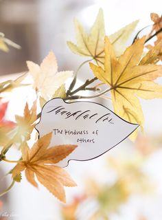 DIY Thanksgiving Decor Ideas - Thankful Tree Leaves - Fall Projects and Crafts for Thanksgiving Dinner Centerpieces, Vases, Arrangements With Leaves and Pumpkins - Easy and Cheap Crafts to Make for Home Decor http://diyjoy.com/diy-thanksgiving-decor-ideas