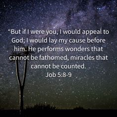 John You did not choose me, but I chose you and appointed you so that you might go and bear fruit—fruit that will last—and so that whatever you ask in my name the Father will give you. I Choose You, You Ask, John 15 16, My Daily Devotion, Colossians 1, New King James Version, Daily Devotional, My Name Is, All Things