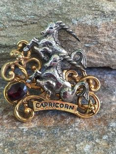 Capricorn Brooch Zodiac Sign Brooch Astrology Sign by PassingTides