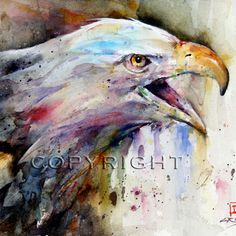 BALD EAGLE Watercolor Print by Dean Crouser by DeanCrouserArt, $45.00