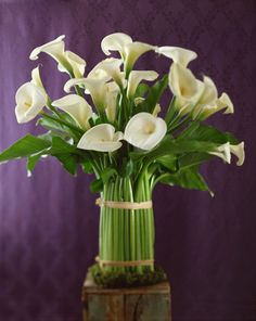 The Most Popular Mother's Day Flowers Throughout History  - HouseBeautiful.com