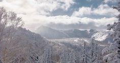 Happy #MountainMonday who's ready for some of this?  SASS Japan through the lens of @lucasmoorephoto last year. #SASSJapan #mountains #snow #japanuary #japow #getready