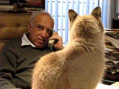 Carlos Monsivais =^.^= #gato #cat #chat