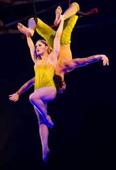 21 best trapeze images  aerial arts aerial dance aerial