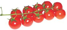"""Photo from album """"фрукты, овощи"""" on Yandex. Green Tomatoes, Growing Tomatoes, Red Tomato, Red Fruit, Small Plants, Fruits And Vegetables, Stuffed Mushrooms, Finding Yourself, Clip Art"""