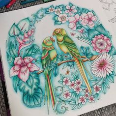 Take a peek at this great artwork on Johanna Basford's Colouring Gallery! Free Coloring, Coloring Books, Joanna Basford, Johanna Basford Coloring Book, Wonder Book, Colouring Techniques, Gallery, Drawings, Artwork