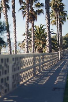 just something about palm trees.summer, i miss you. Welcome To My House, Great Walks, California Love, Beach Walk, Go Outside, Vacation Destinations, Santa Monica, Summer Vibes, Summer 3