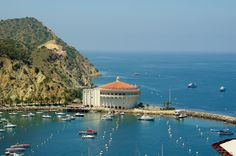 Catalina, CA. Been there back in the late 70's, wanna go agsin.