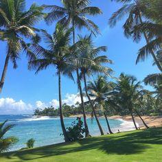 "compassandtwine: ""Siesta | Dorado Beach Resort | #compassandtwine #doradobeach #travel #puertorico #dametraveler #tlpicks #beautifuldestinations #lifewelltravelled #traveldeeper #wanderlust #beach #beachlife #caribe #CandTflyaway #takemethere @inspirato @dorado_beach"""