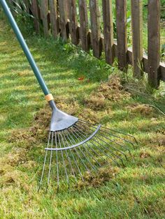 Keep your lawn green all year long!