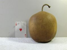 Apple Gourd Quality Hard-shell Dried Apple Gourd washed dried and ready For Crafts BIRDHOUSE...... AG#16 by midmowoodworks on Etsy