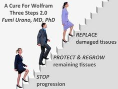 Combating Wolfram Syndrome: Three Step Formula to Provide a Cure for Wolfram S. Personalized Medicine, Rare Disease, Genetics, Type 1, Disorders, Third, The Cure