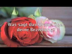 Orakel Gratis Rose, Flowers, Plants, Partner, Legends, Pink, Plant, Roses, Royal Icing Flowers