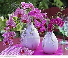 Eliana Pedron Assessoria e Organização de Eventos: Orquídeas na decoração