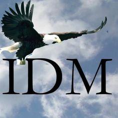 Iolar Digi Marketing (@IolarDM) | Twitter Bald Eagle, Digital Marketing, Aviation, Twitter, Animals, Animaux, Animal, Animales, Aircraft