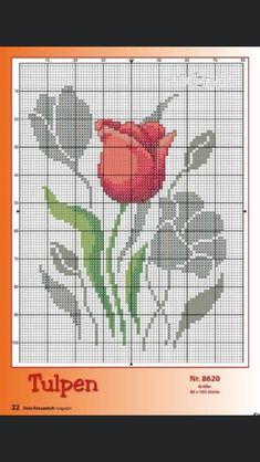 Stitches, Tulips